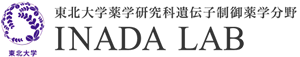 東北大学薬学研究科 遺伝子制御薬学分野 稲田 利文研究室
